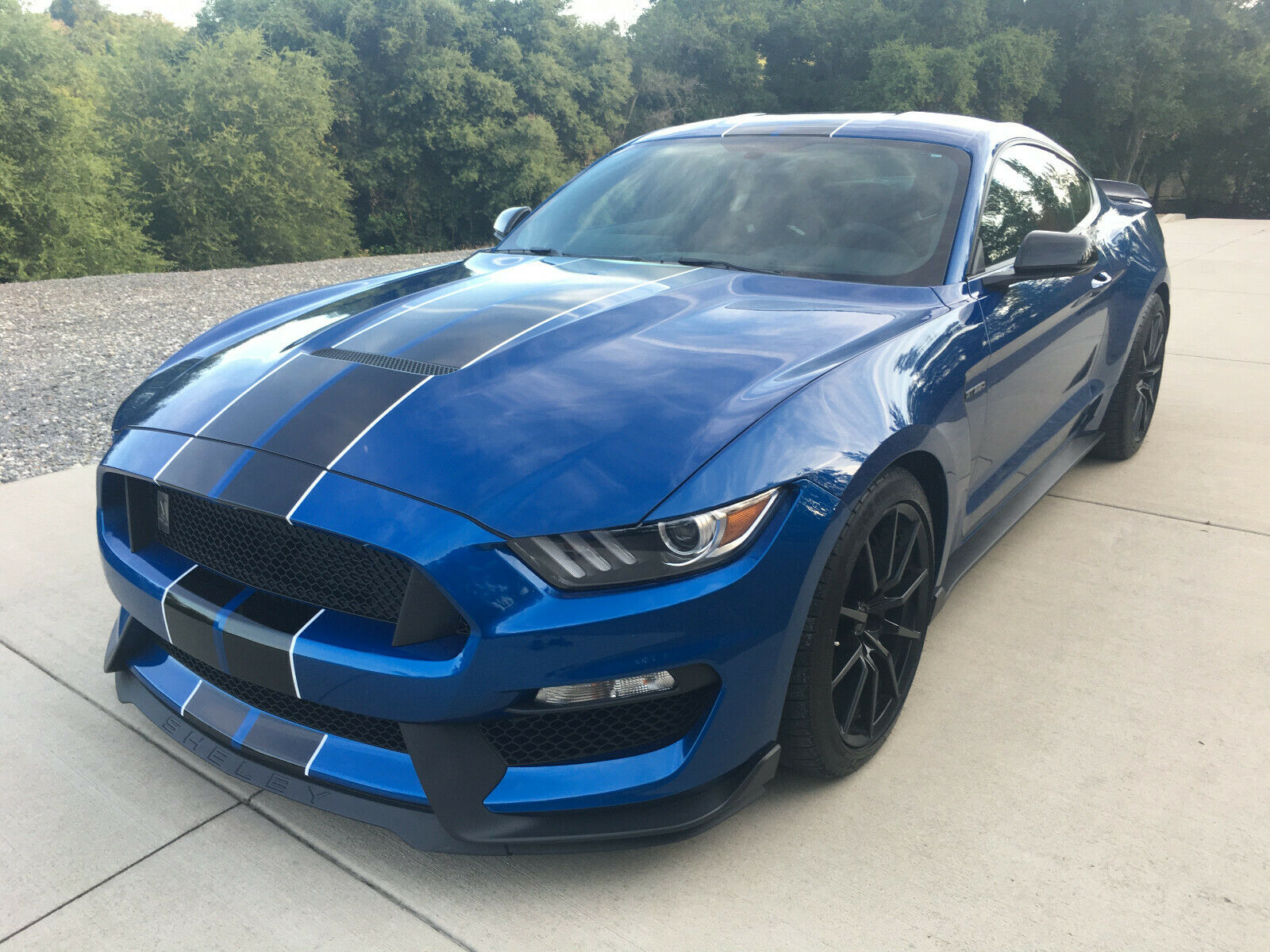 Used 2017 Ford Mustang 2017 Ford Mustang SHELBY GT350 2021 ...