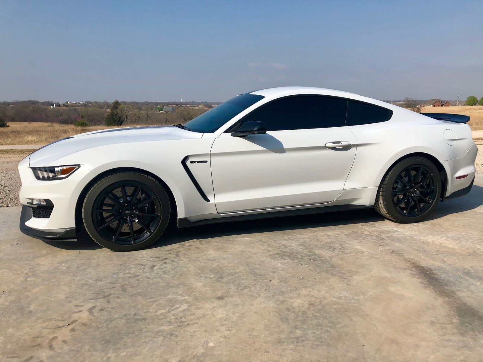 2017 Shelby Gt350 For Sale >> Amazing Ford Mustang Shelby GT350 2017 Shelby GT350 2100 ...