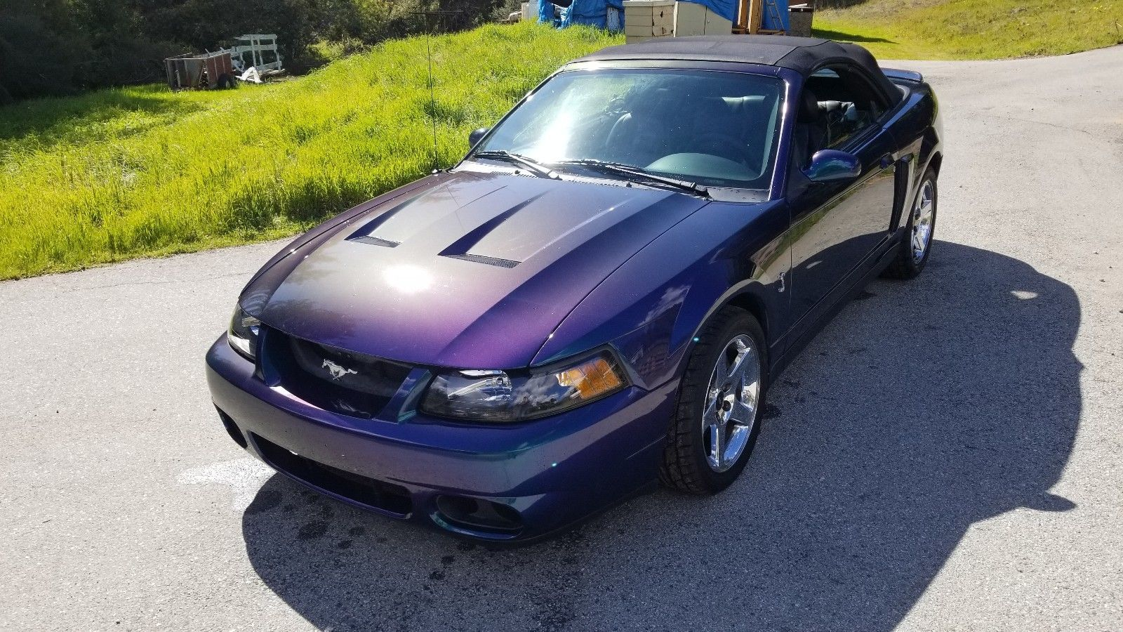 Great 2004 Ford Mustang Svt Cobra Convertible Mystichrome 2018 2019