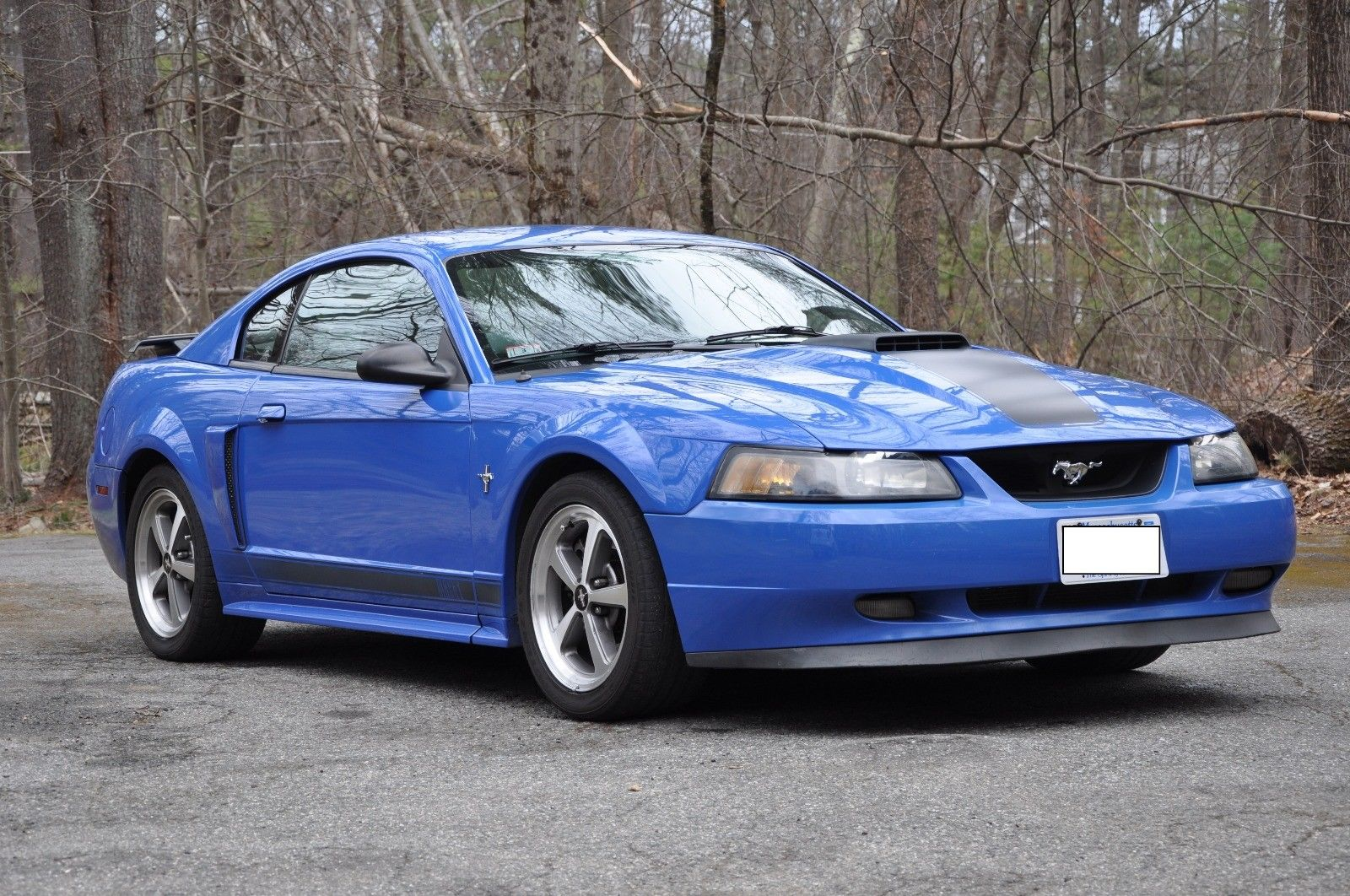 Amazing 2003 Ford Mustang Mach 1 2017 2018