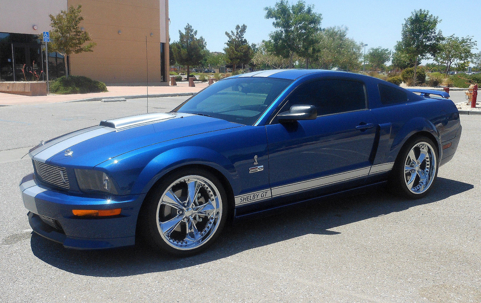 Great 2008 ford mustang shelby gt 4 6l sohc v8 foose wheels 1511 of only 2300 shelbys made in 2008 many extras 2018 2019