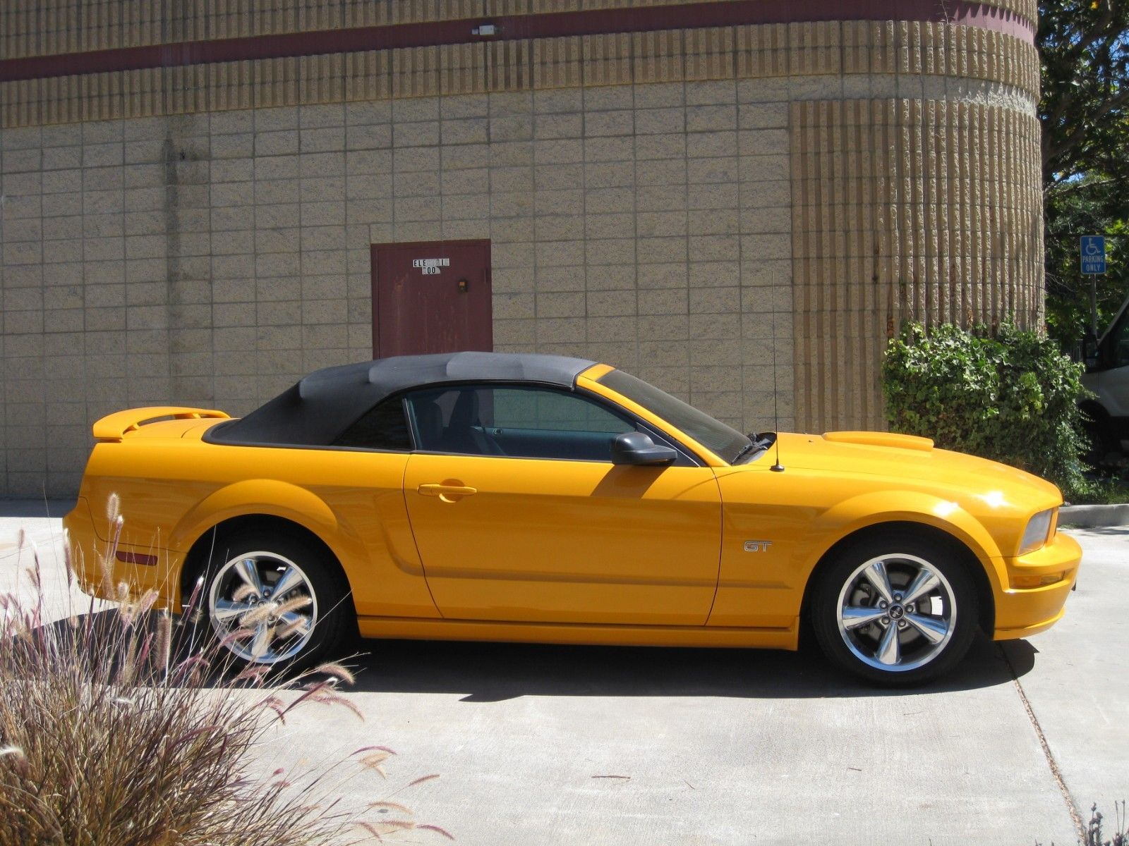 amazing  ford mustang  ford mustang gt grabber orange  miles   mycarboard