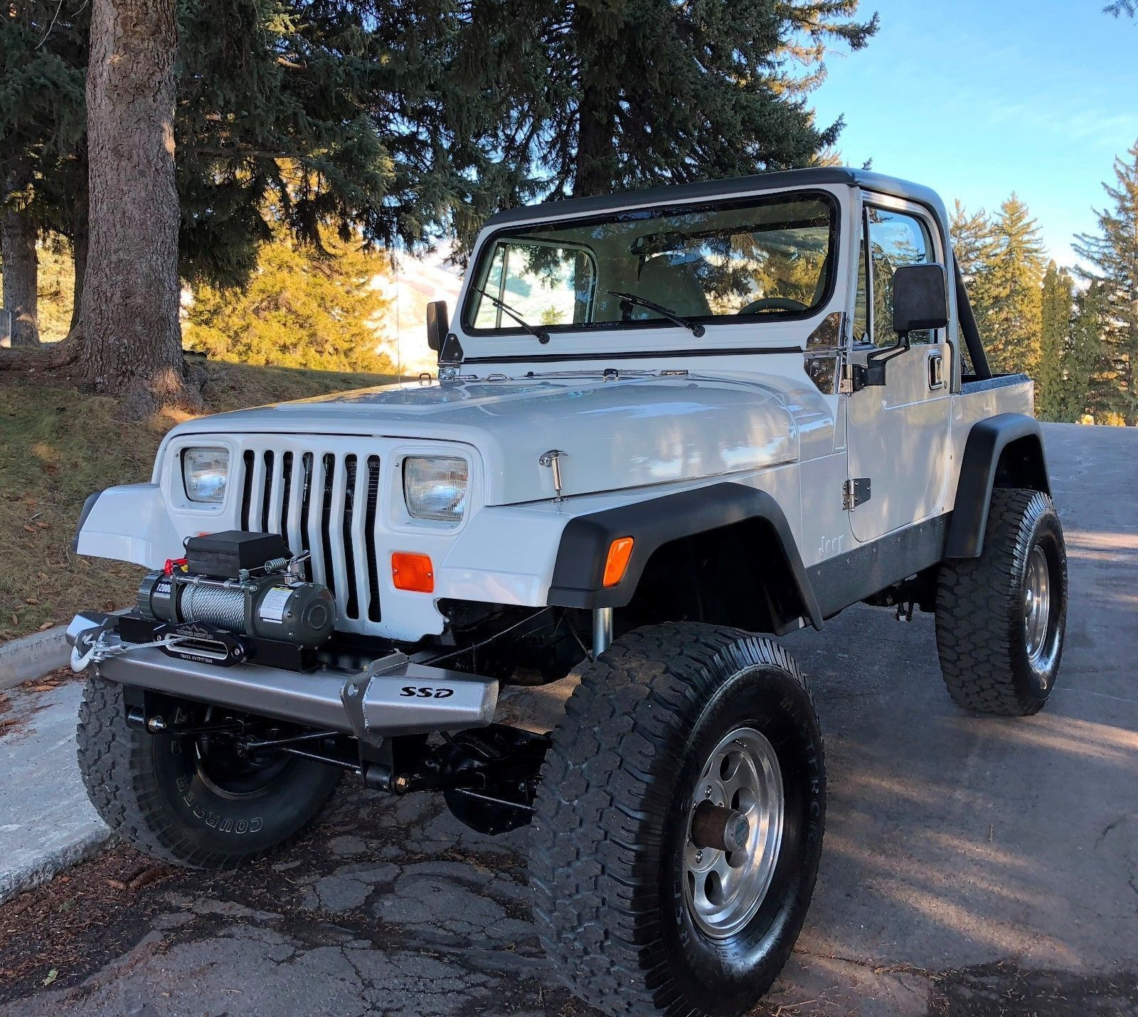 1989 Jeep Wrangler 1989 JEEP WRANGLER YJ